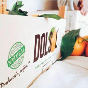 caja naranjas Dolsol Citrus