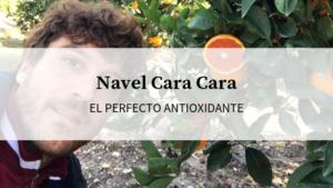 naranja navel cara cara gran fuente de antioxidantes